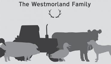 westmorland ltd
